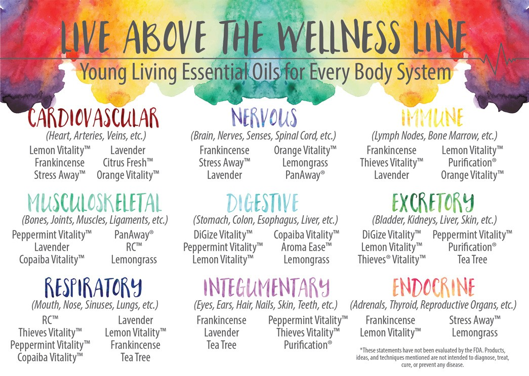 living-above-the-wellness-line-front